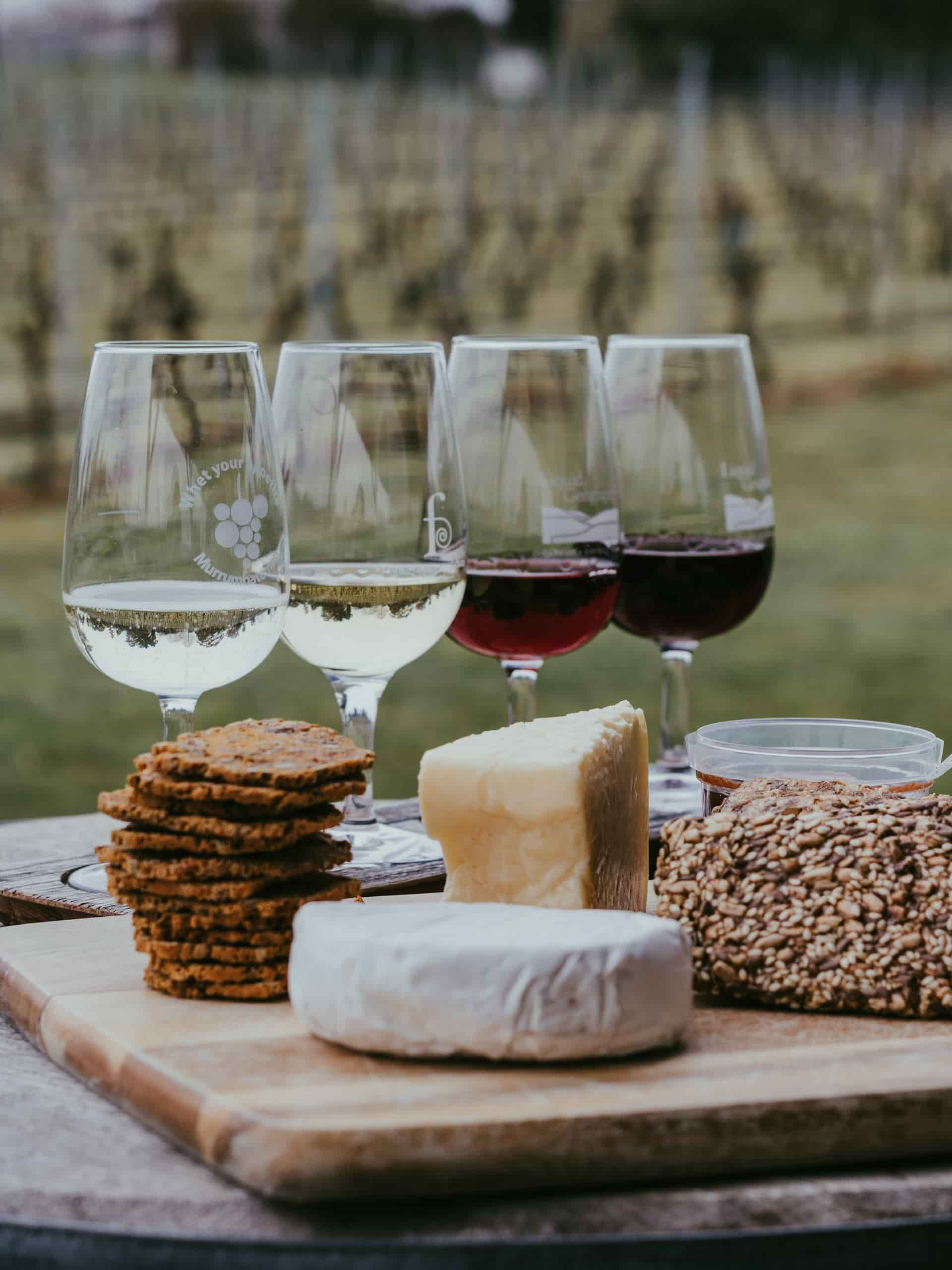 6 of the Best Wine and Cheese Pairings
